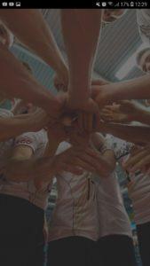 Volleyball-Ergebnisdienst-1